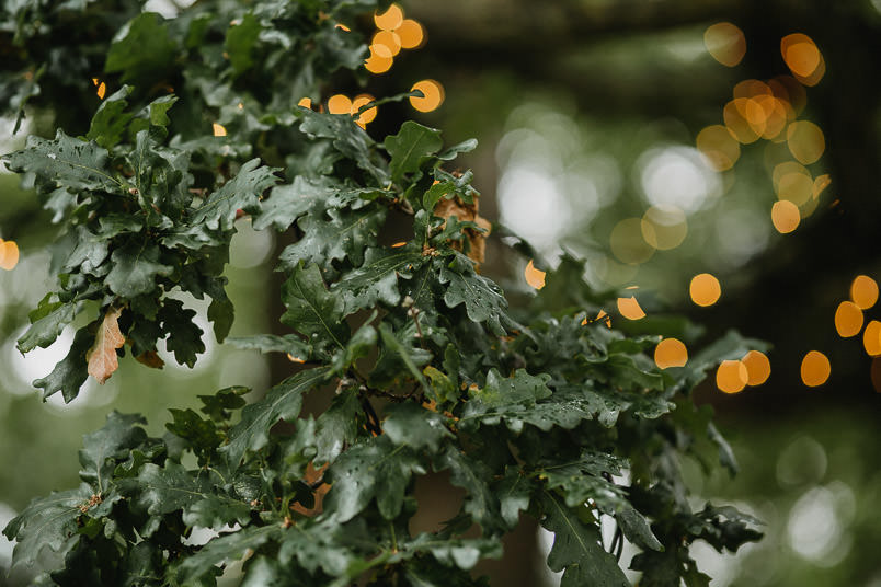 Garden wedding - Wedding photographer Nottingham 1